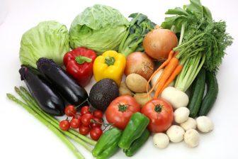 ファスティングダイエットは、野菜の酵素に頼る!