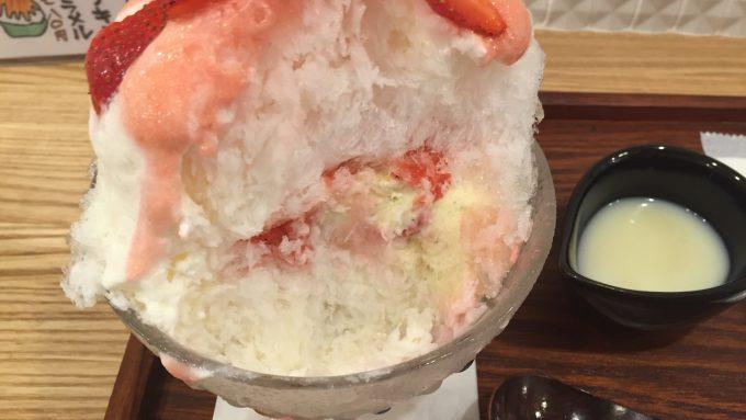 コオリヤ ユキボウシ カープ氷 なかからバニラアイス